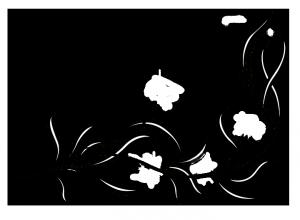 flowers-2329468_960_720 copy